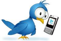 Twitter через SMS (настройка + бонус за RT)