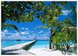 velcom разыграл путевки на Мальдивы