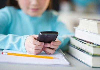 Курские школы в целях безопасности оснастят специальными турникетами