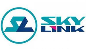 Skylink может сменить владельца