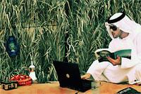 ОАЭ ворвалась в шестерку ведущих стран мира по скорости передачи данных